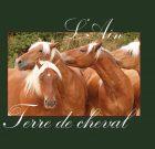 L'Ain terre de cheval
