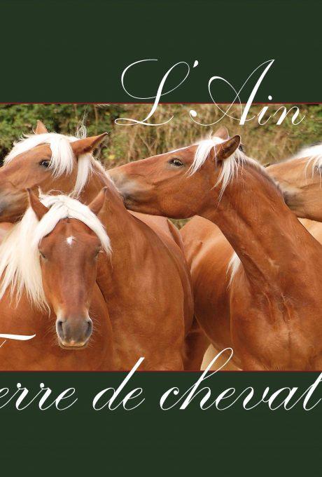 Le cheval dans l'Ain